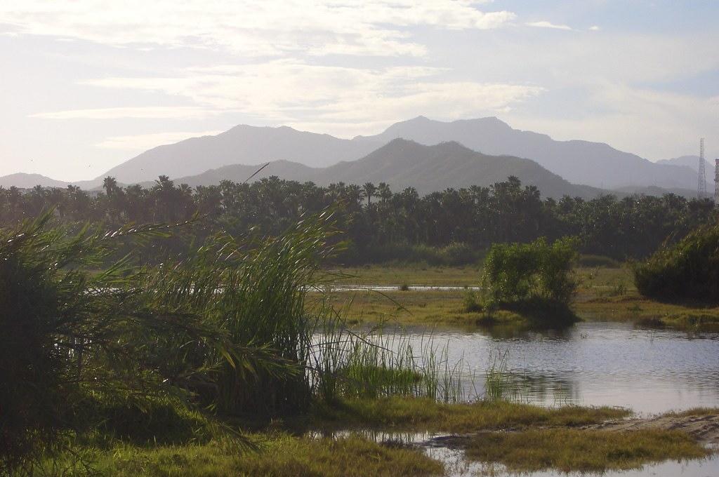Cabo San Jose Estuary