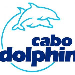 los cabos cabo adventure dolphins